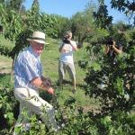 Ambassador Rowan plants Amber tree.Посланик Роуан засажда дърво Кехлибар